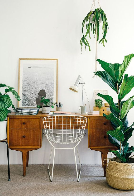 Working from home: this is what you need to create an effective working space