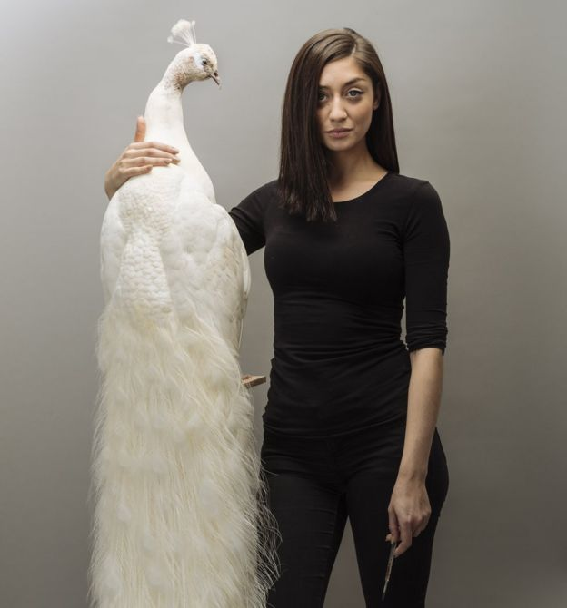 An honest chat with Elle Kaye: life as a millennial taxidermist