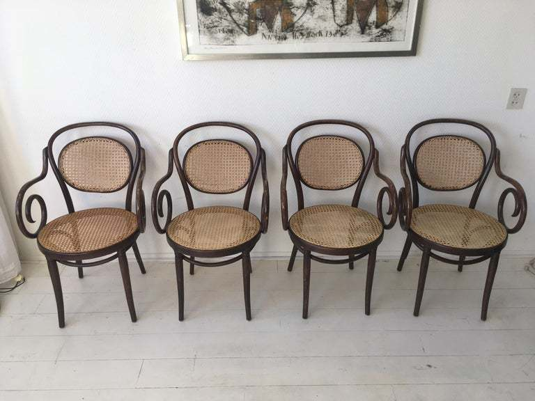 bentwood thonet vintage bistro dining chairs